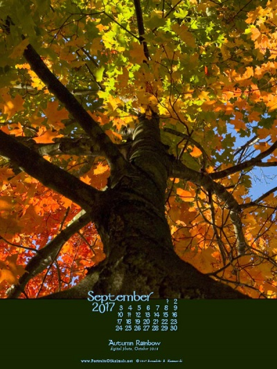 Desktop calendar, 600 x 800 for iPad, Kindle and other readers.