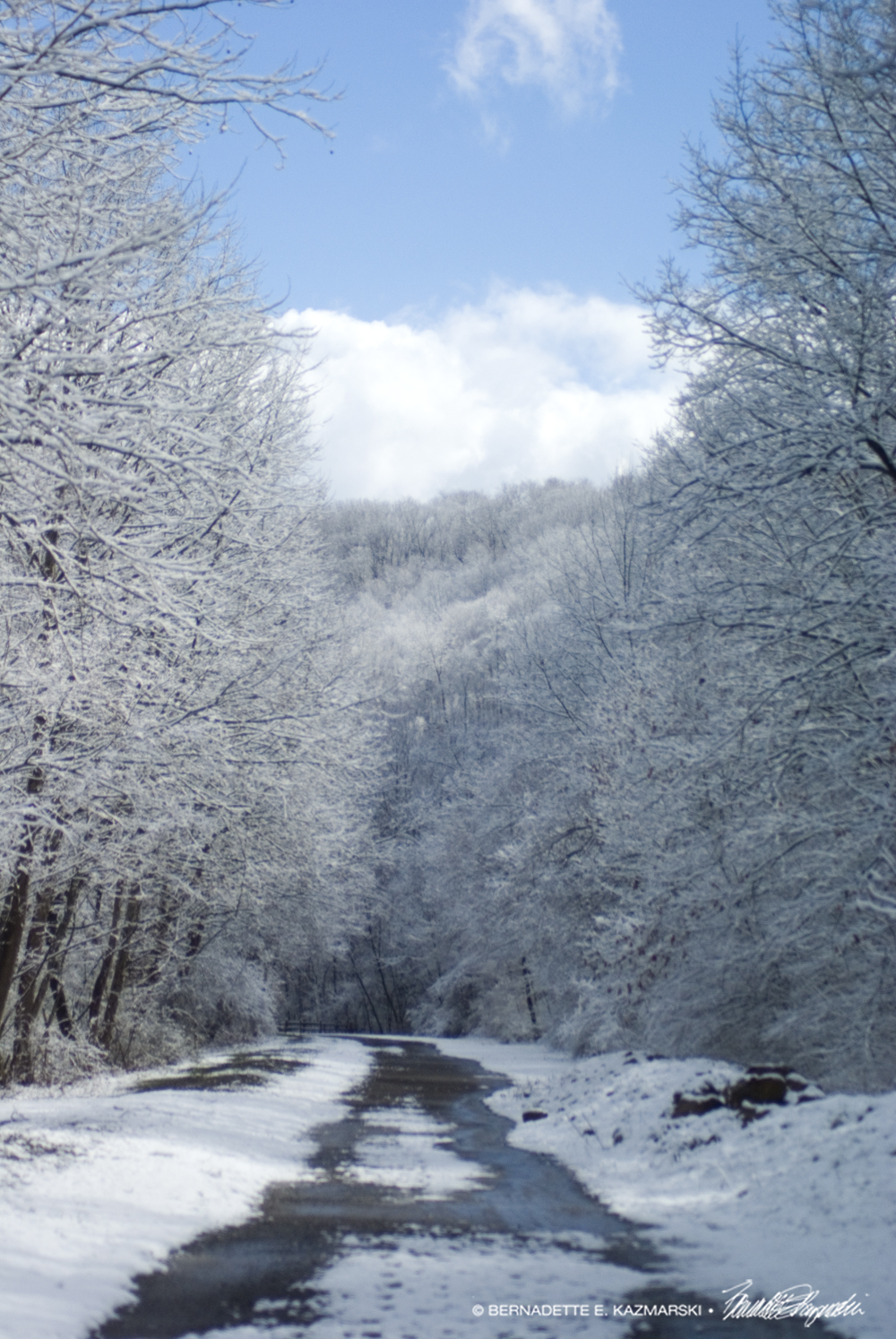 Trail31-1000px