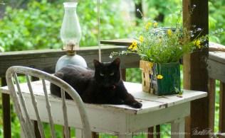 051715-Mimi-table-perfect