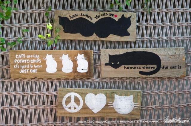 Cat signs.