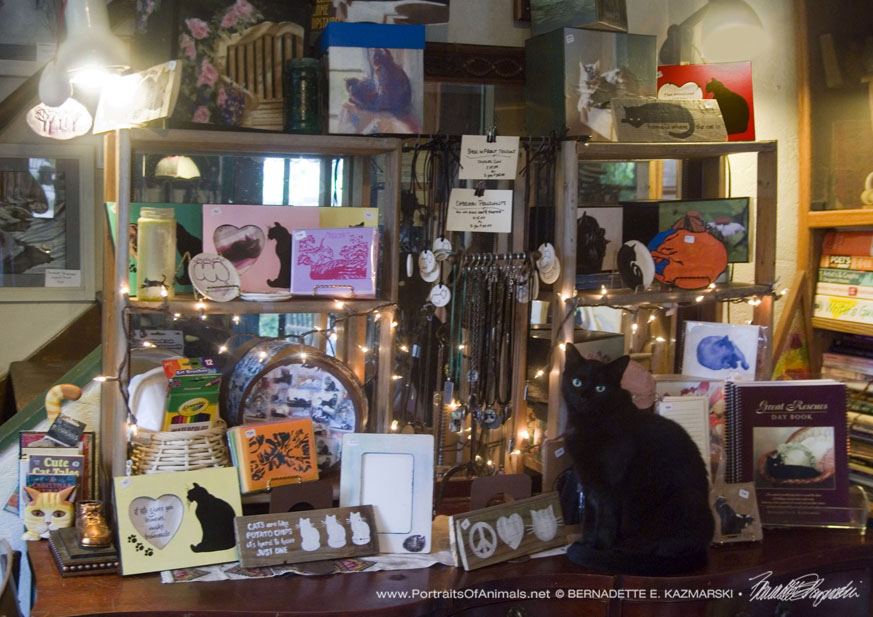 display of handmade goods with cat
