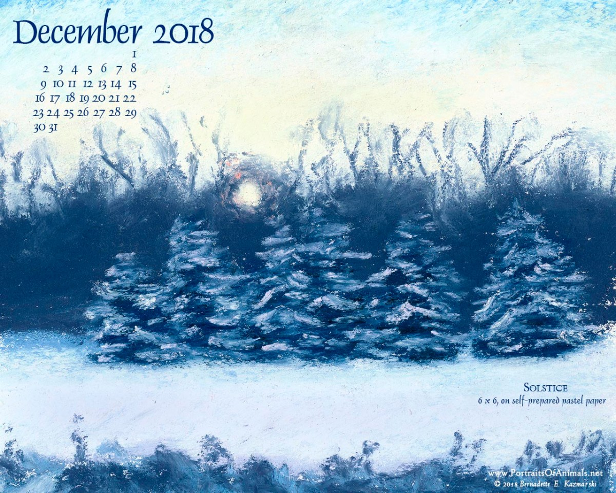 December Nature Desktop Calendar: Solstice