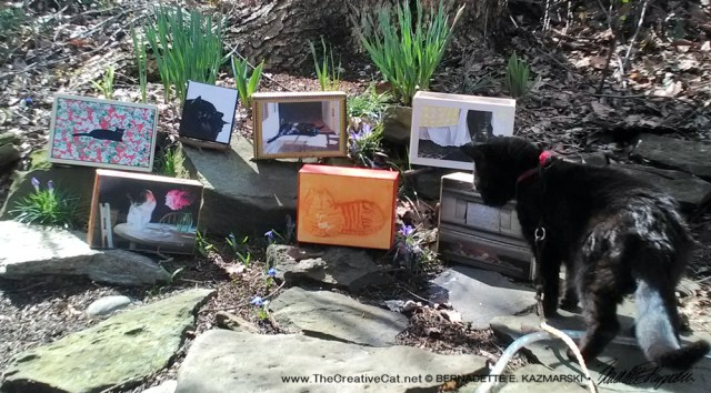 black cat with keepsake boxes