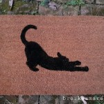 silhouette of cat scratching