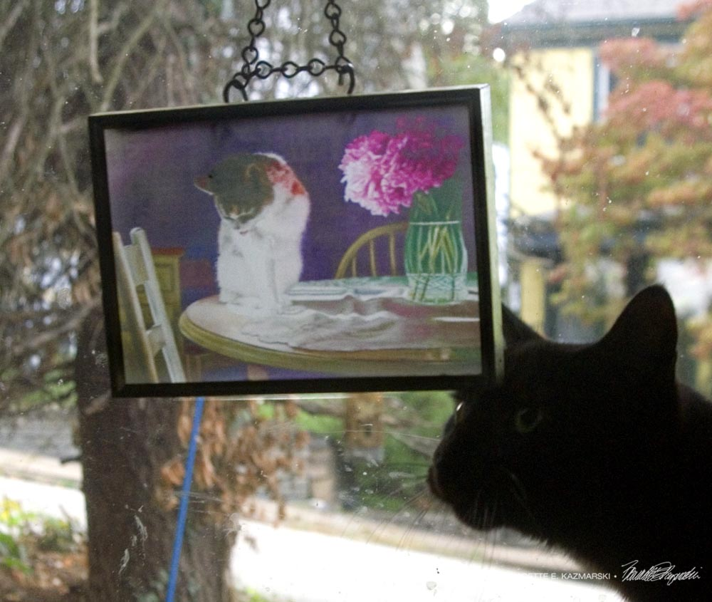 Suncatcher in recycled picture frame