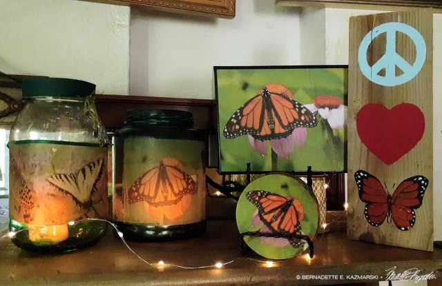 display of monarch butterfly items