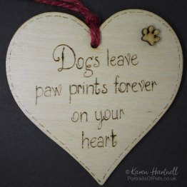 Dogs heart plaque