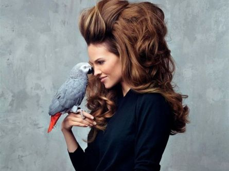 "Hillary Swank with the African Grey named ""Seuss"""