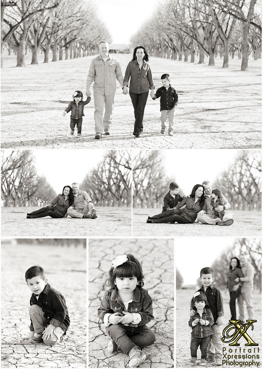 Family photography portrait session