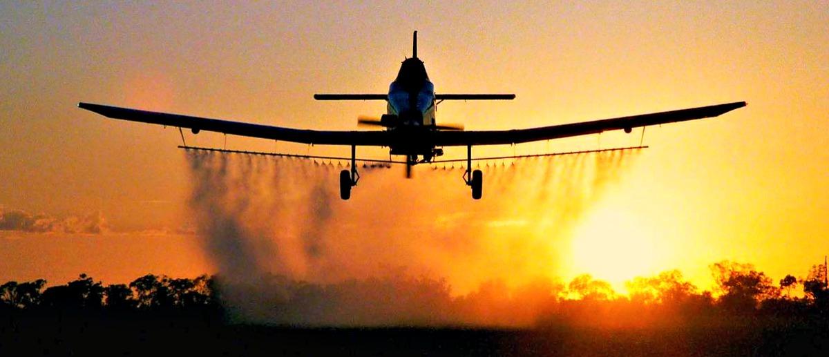 Antes do Ceará, 8 municípios já haviam proibido fumigação aérea de agrotóxicos