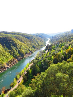 the river Zezere
