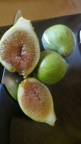 In the village the figs are ripe , but most have split on the trees due to the high amount of rain we had this year. Such a shame !