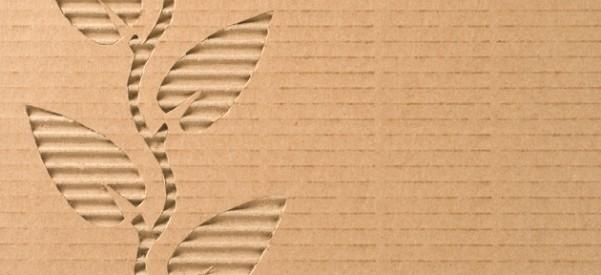 Caixa de papelão vira mochila e mesa na Índia