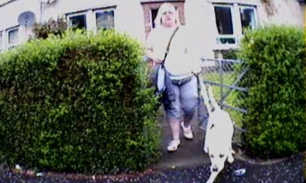 Puppy walker who claimed £5,000 in disability benefits