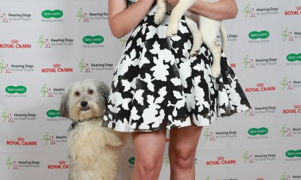 Celebrities and cute puppies at the Hearing Dogs Awards