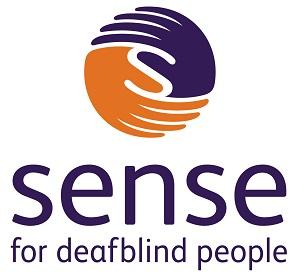Sense responds to SEND The Key report