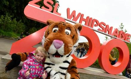 ZSL Whipsnade Zoo's Children's Day Success