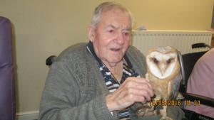 owls (25)