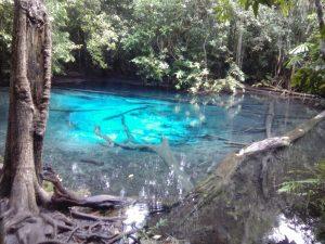 Emerald Blue Pool
