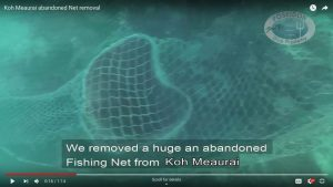 Fishing Net removal Meaurai