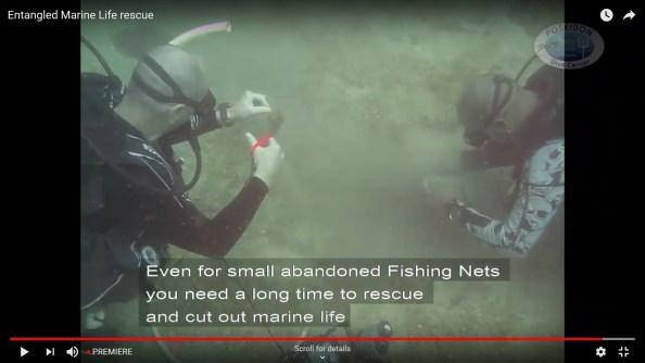 Dan Ryan underwater cleanup