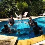 Kontakt Dive Course Pool