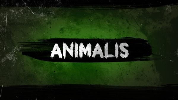 Logo webserie Animalis