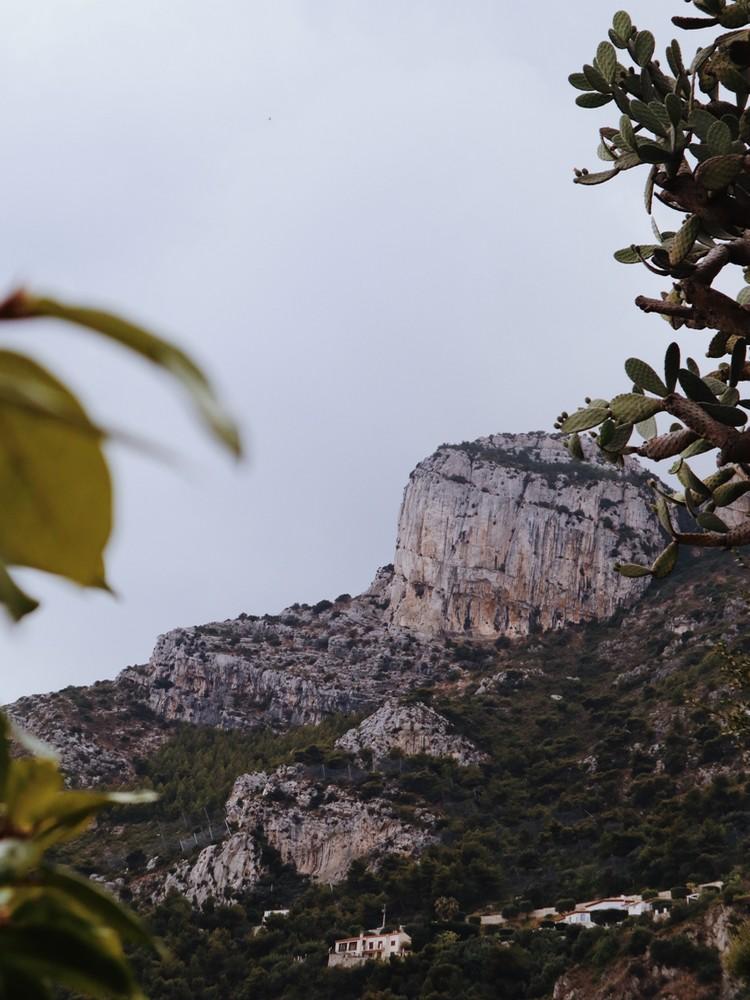 visiter jardin exotique Monaco