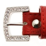 Red Leather Diamante Dog Collar and Bone Charm