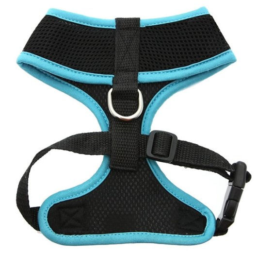 Active-Mesh-Harness-Blue2