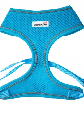 airmesh-dog-harness-cyan