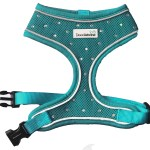 Crystal Airmesh Dog Harness In Teal