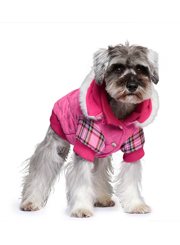 Highland_Lady_Quilted_Tartan_Dog Coat2
