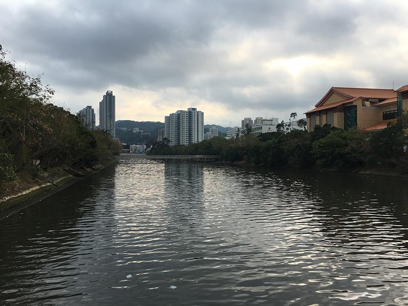香港新界沙田美食之旅