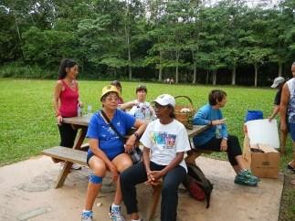Run 856 Samaan Park
