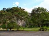 SAN FERNANDO HILLRUN#884 153