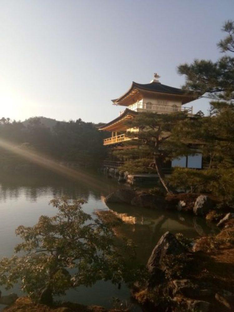 a journey to japan temple of golden pavilion