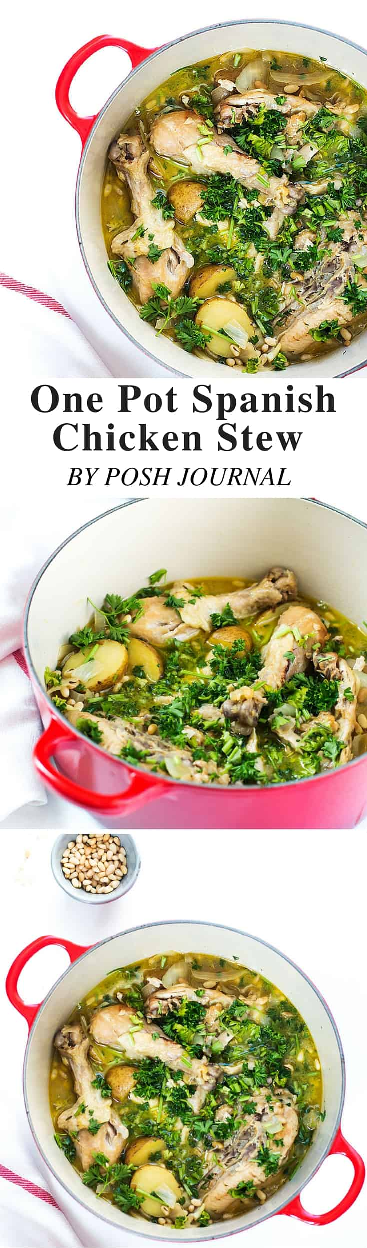 One Pot Spanish Chicken Stew Recipe-2