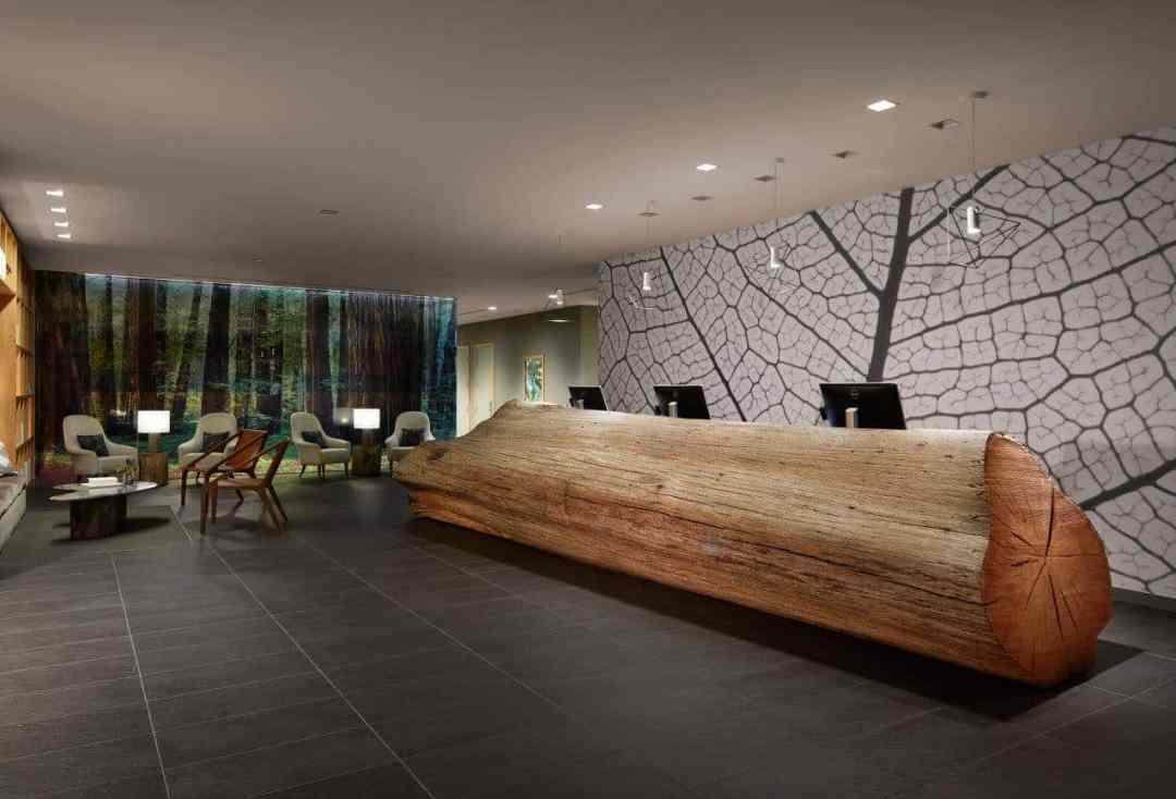 hotel paradox lobby area