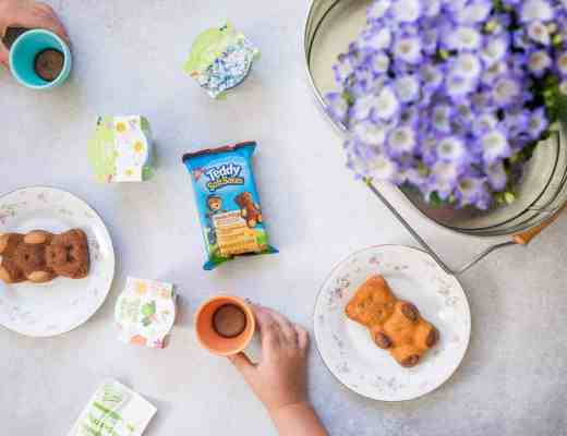 Teddy Soft Bakes Healthy Snacks-7