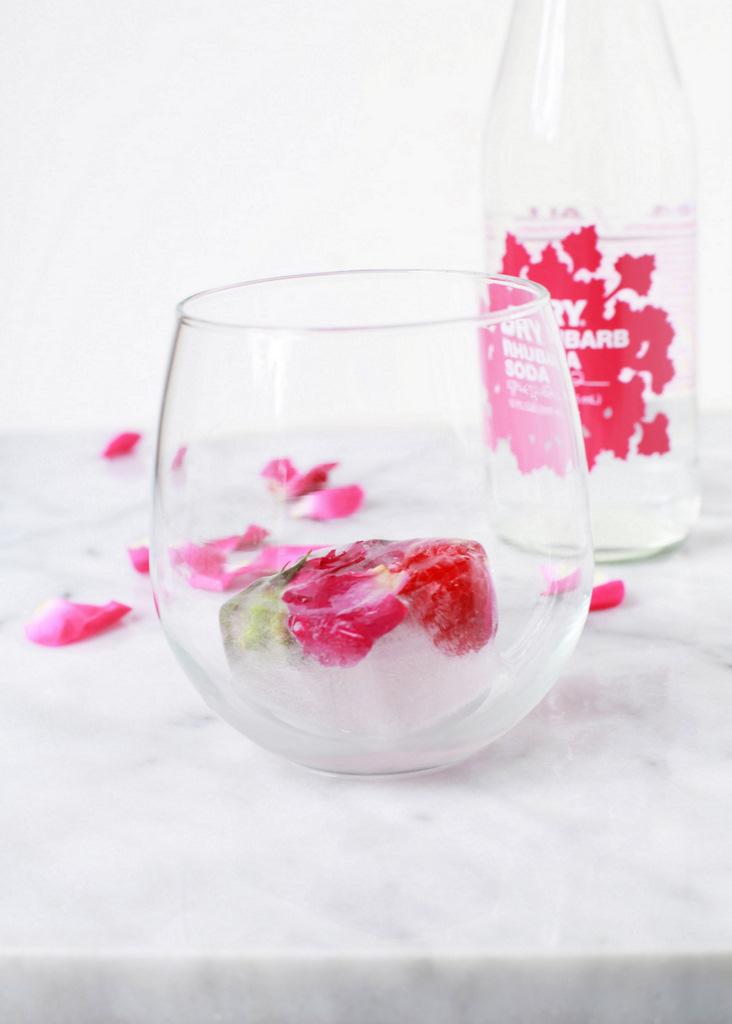 Raspberry Rose Ice Cubes   Posh Little Designs-diy-beverage