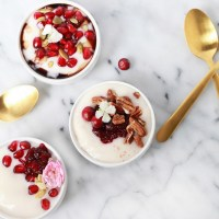 Dairy Free Yogurt - Breakfast - Toppings