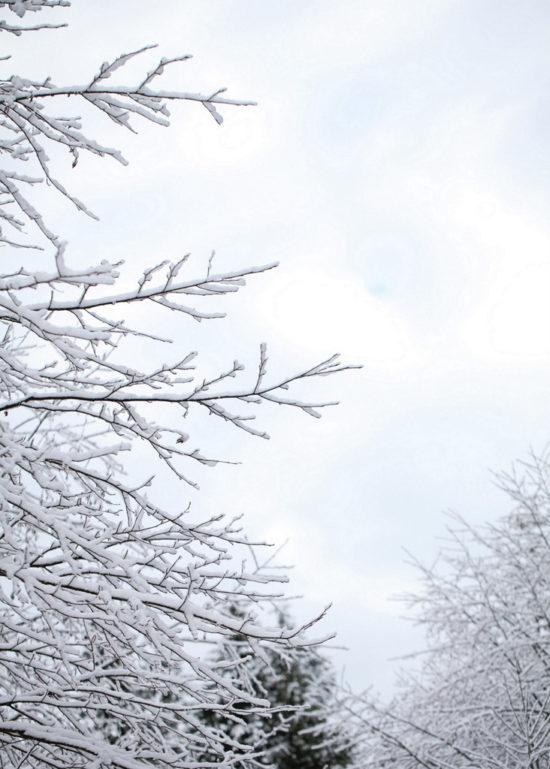 Snow_Family_Lifestyle