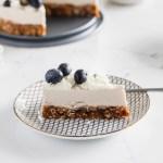 Raw Vegan Coconut Blueberry Cake - Gluten Free - Desserts - Summer - No Bake