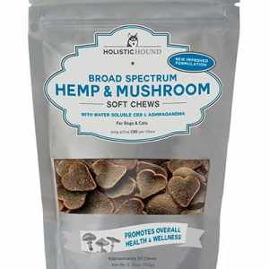 HH Hemp CBD Mushroom Chew 6 MG 4 Count Trial Pack