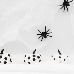 Halloween, Black and White Pumpkins, Spiders, Spiderweb