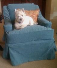 Charisma Velvet Chair