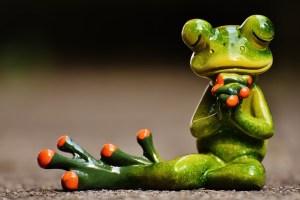 Betender Frosch Gebet