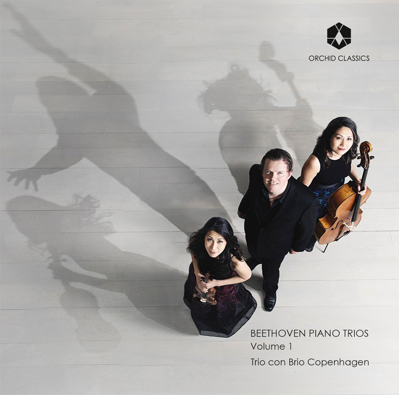 Notes of an Amateur: Pärt, Beethoven, Henze, and Blue Violet Duo