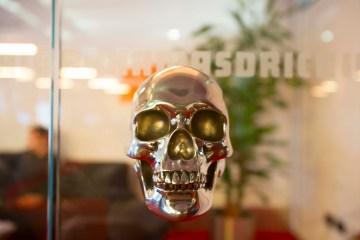 Positive Equity Skull